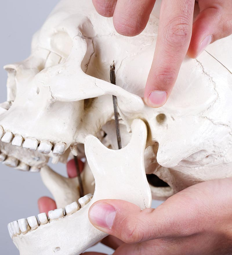 complete therapy Temporomandibular Joint Dysfunction
